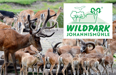 Wildpark Johannesmühle